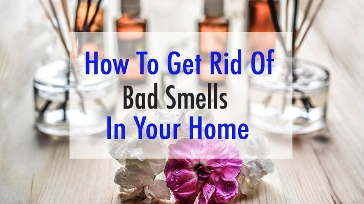 How to Get Rid of Bad Smell in House (DIY Methods)